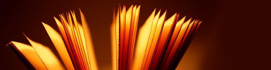 2920_bladeren-oranje